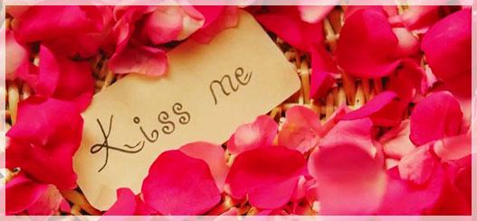 kiss greeting cards - Greeting Cards Com