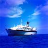 wish bon voyage
